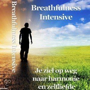 boek-omslag-marco-de-jager-breathfulness-intensive